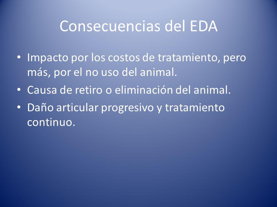 Consecuencias del EDA Impacto por los costos de tratamiento, pero más, por el no uso del animal.