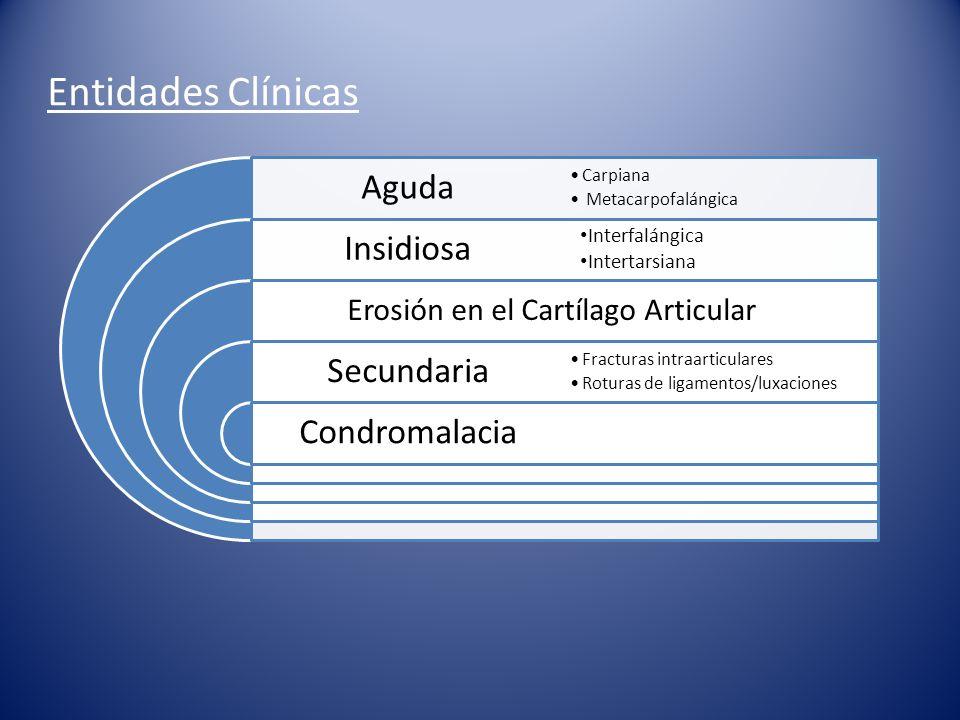 Diagnóstico EDA Se basa en: -Anamnesis.-Signos clínicos.