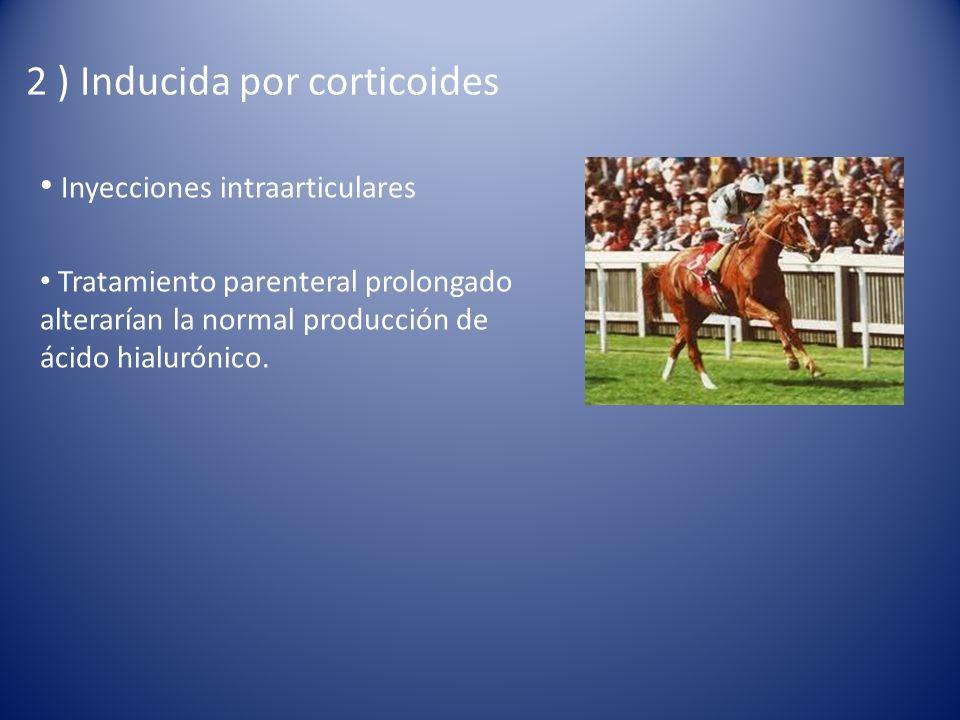 2 ) Inducida por corticoides Inyecciones intraarticulares Tratamiento parenteral prolongado alterarían la normal producción de ácido hialurónico.
