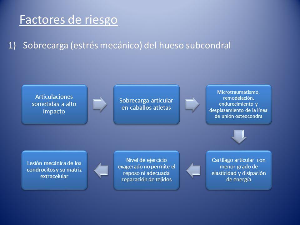 Prevención y Control EDA Reconocer causa y su eliminación.