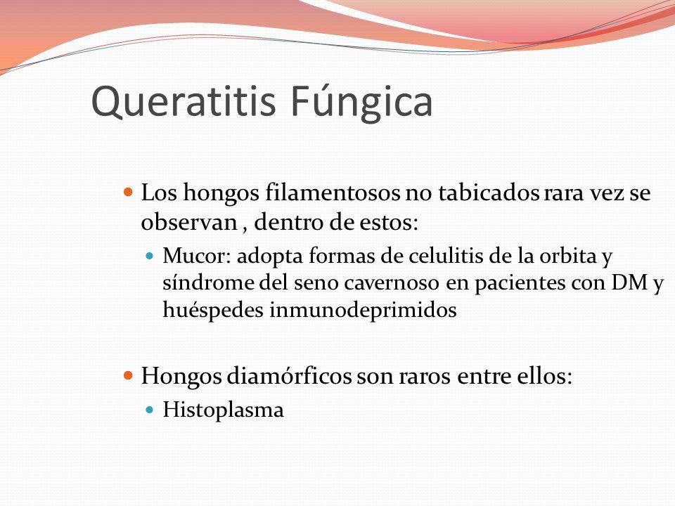 Los hongos filamentosos no tabicados rara vez se observan, dentro de estos: Mucor: adopta formas de celulitis de la orbita y síndrome del seno cavernoso en pacientes con DM y huéspedes inmunodeprimidos Hongos diamórficos son raros entre ellos: Histoplasma Queratitis Fúngica