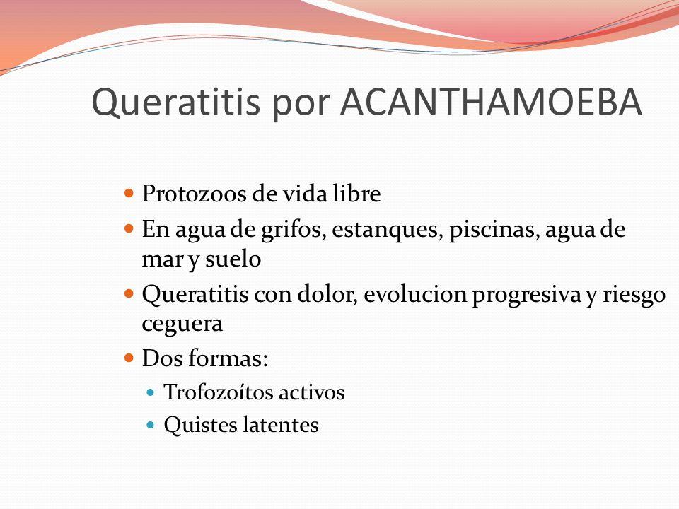 Queratitis por ACANTHAMOEBA Protozoos de vida libre En agua de grifos, estanques, piscinas, agua de mar y suelo Queratitis con dolor, evolucion progre