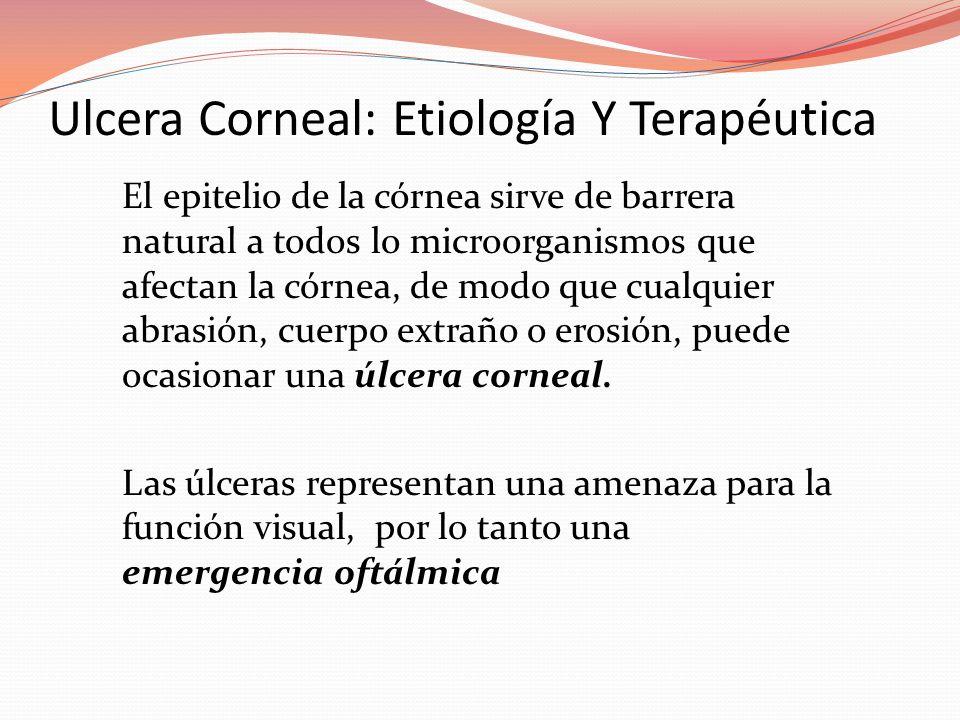Ulcera Corneal: Etiología Y Terapéutica El epitelio de la córnea sirve de barrera natural a todos lo microorganismos que afectan la córnea, de modo que cualquier abrasión, cuerpo extraño o erosión, puede ocasionar una úlcera corneal.