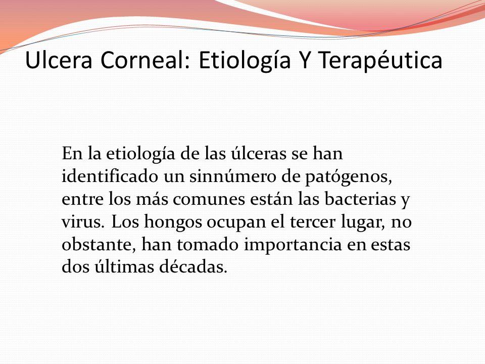 Ulcera Corneal: Etiología Y Terapéutica En la etiología de las úlceras se han identificado un sinnúmero de patógenos, entre los más comunes están las