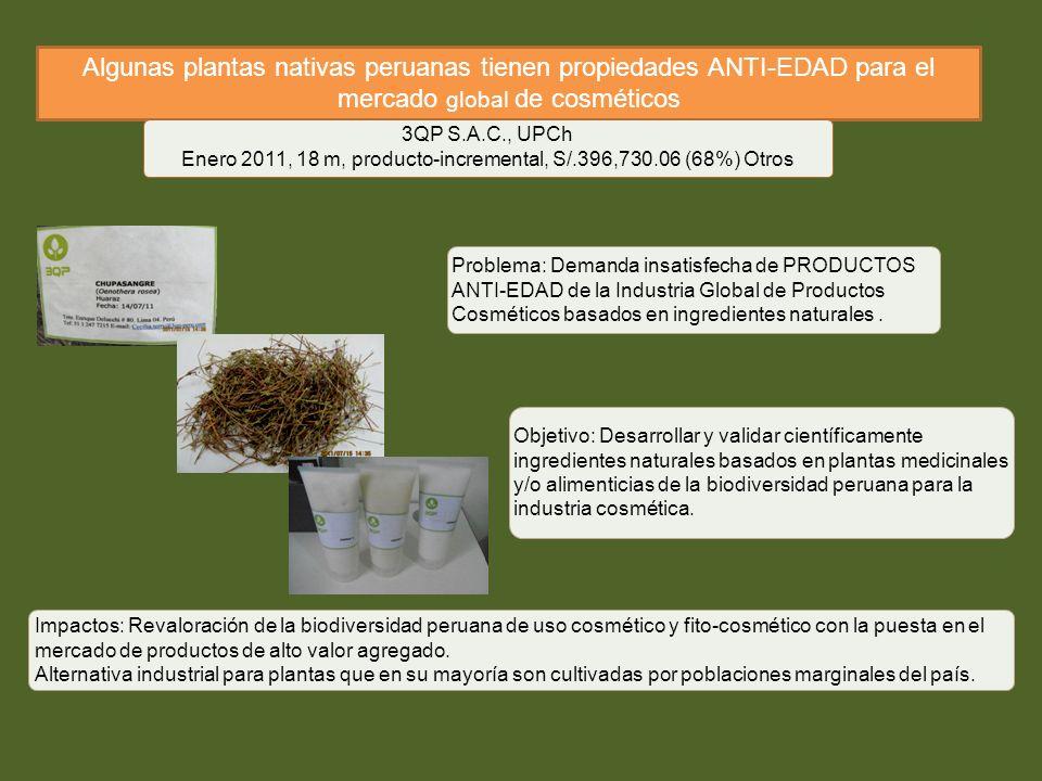 Algunas plantas nativas peruanas tienen propiedades ANTI-EDAD para el mercado global de cosméticos 3QP S.A.C., UPCh Enero 2011, 18 m, producto-increme
