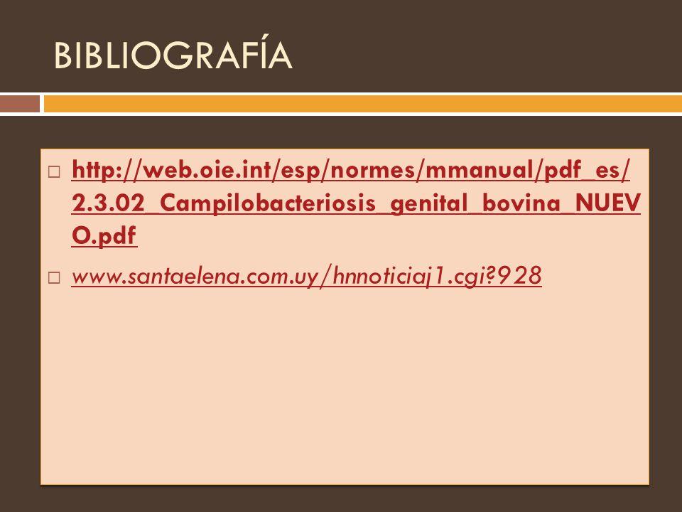 BIBLIOGRAFÍA http://web.oie.int/esp/normes/mmanual/pdf_es/ 2.3.02_Campilobacteriosis_genital_bovina_NUEV O.pdf http://web.oie.int/esp/normes/mmanual/p