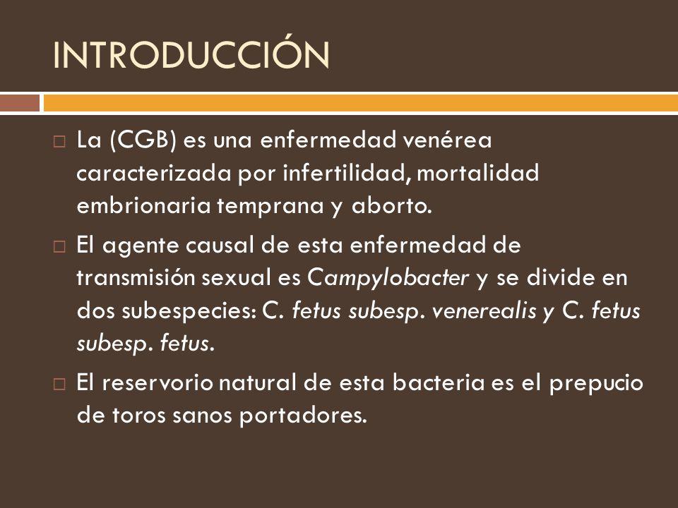 INTRODUCCIÓN La (CGB) es una enfermedad venérea caracterizada por infertilidad, mortalidad embrionaria temprana y aborto. El agente causal de esta enf
