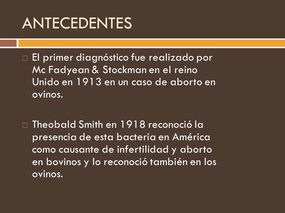 ANTECEDENTES El primer diagnóstico fue realizado por Mc Fadyean & Stockman en el reino Unido en 1913 en un caso de aborto en ovinos. Theobald Smith en