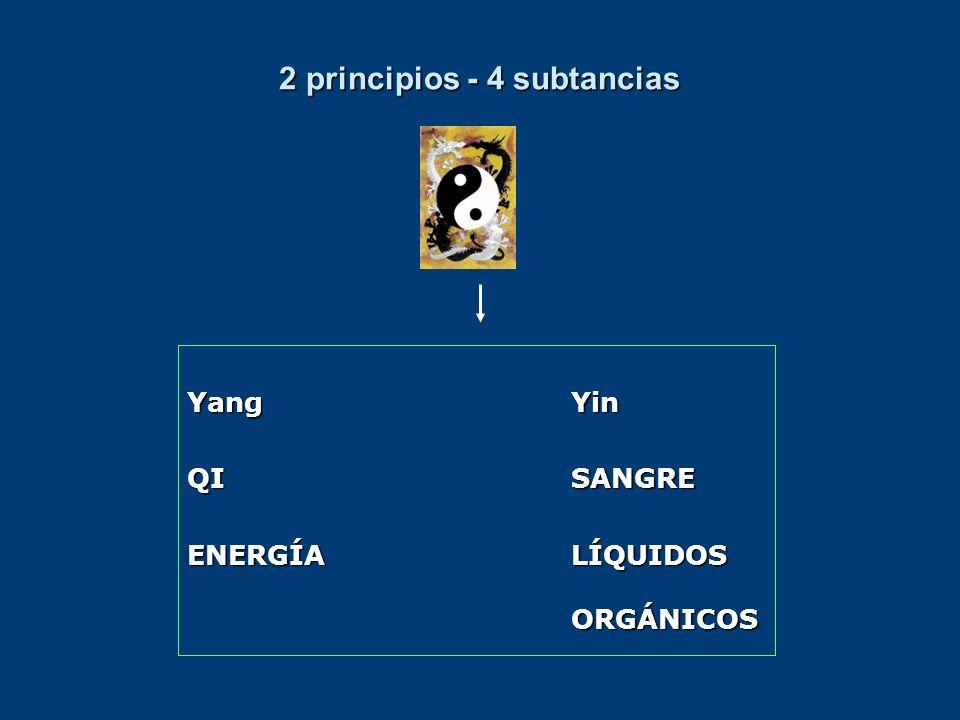 2 principios - 4 subtancias YangYin QISANGRE ENERGÍA LÍQUIDOS ORGÁNICOS