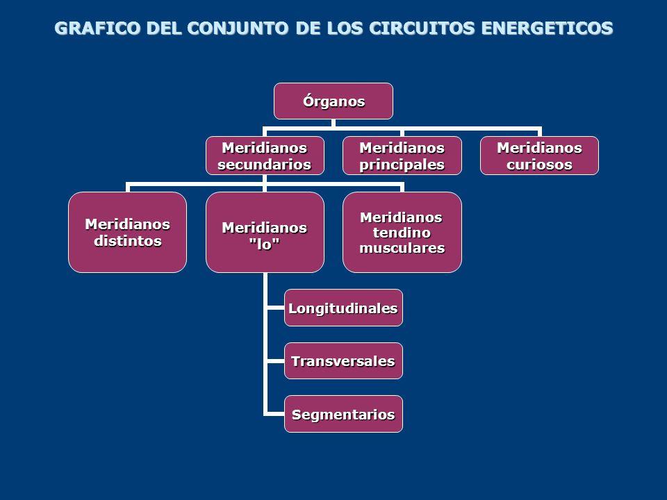 GRAFICO DEL CONJUNTO DE LOS CIRCUITOS ENERGETICOS