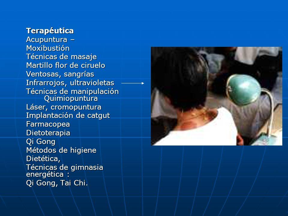 Terapéutica Acupuntura – Moxibustión Técnicas de masaje Martillo flor de ciruelo Ventosas, sangrías Infrarrojos, ultravioletas Técnicas de manipulació