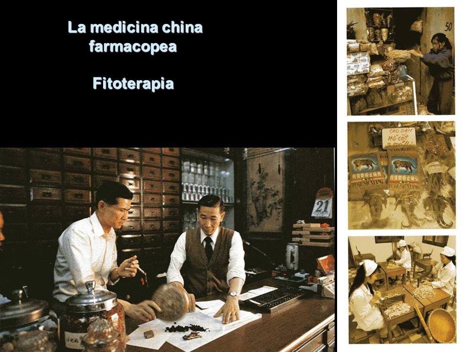 La medicina china farmacopea Fitoterapia La medicina china farmacopea Fitoterapia