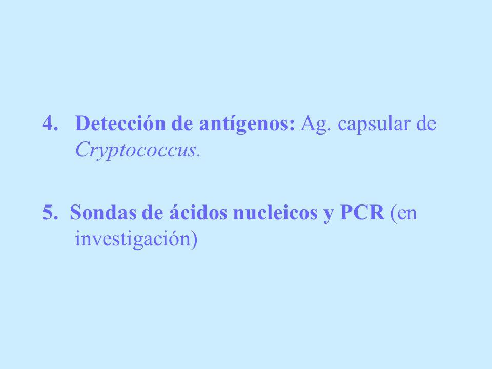 4.Detección de antígenos: Ag. capsular de Cryptococcus. 5. Sondas de ácidos nucleicos y PCR (en investigación)