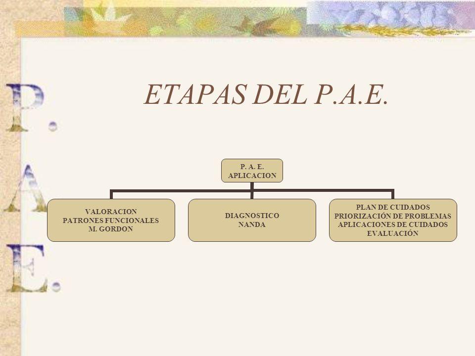 ETAPAS DEL P.A.E.P. A. E. APLICACION VALORACION PATRONES FUNCIONALES M.