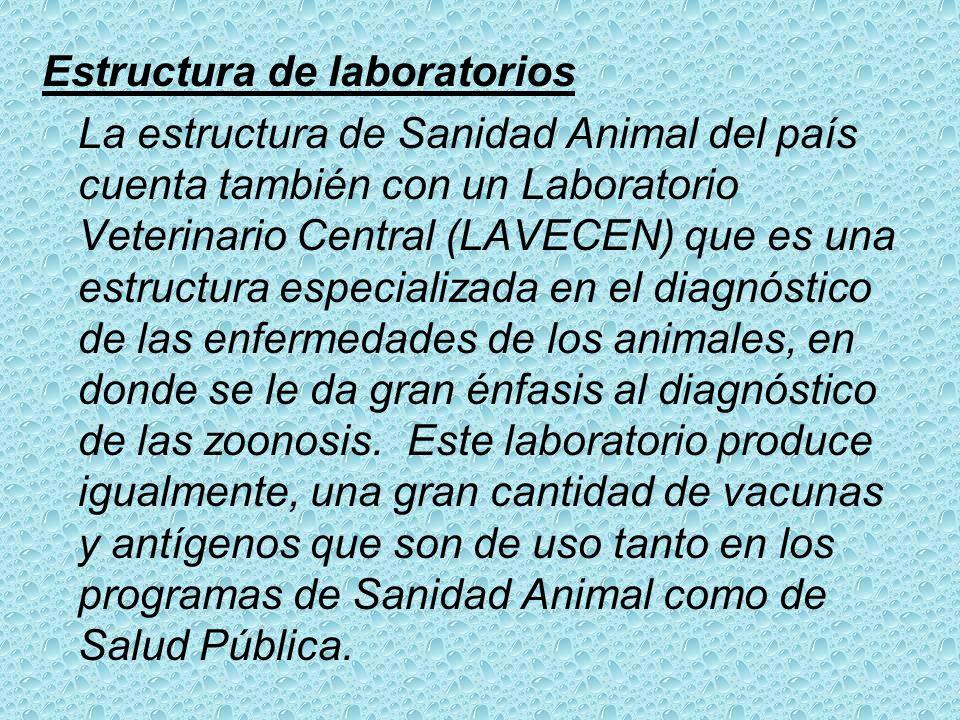 En lo relativo a Cuarentena exterior (puertos, aeropuertos y frontera terrestre) contamos con la siguiente estructura: Médicos Veterinarios En Puertos