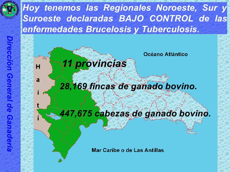 Encontramos el país con una prevalencia de 0.82% en Brucelosis y de 0.36% en Tuberculosis. Dirección General de Ganadería 0.82% en Brucelosis 0.36% en