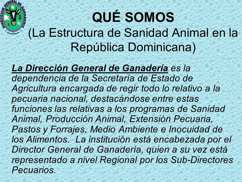 Dr: Reynaldo Peña de la Cruz Director Sanidad Animal Rep. Dom. Santo Domingo, D.N. 4 de Marzo del 2004