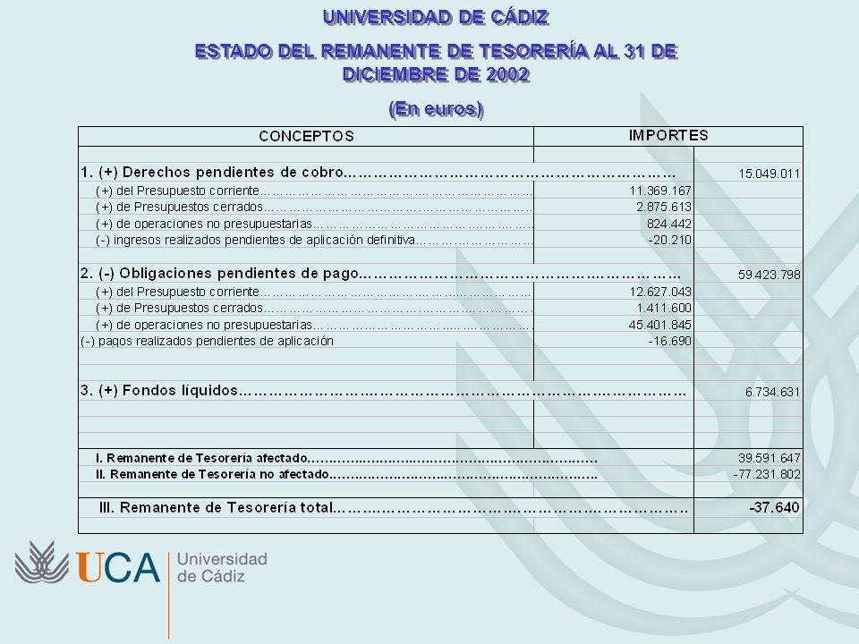 UNIVERSIDAD DE CÁDIZ ESTADO DEL REMANENTE DE TESORERÍA AL 31 DE DICIEMBRE DE 2002 (En euros) UNIVERSIDAD DE CÁDIZ ESTADO DEL REMANENTE DE TESORERÍA AL