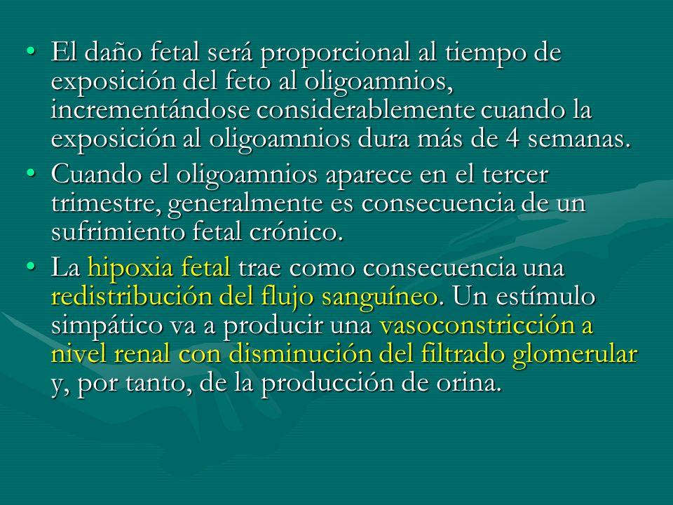 El daño fetal será proporcional al tiempo de exposición del feto al oligoamnios, incrementándose considerablemente cuando la exposición al oligoamnios dura más de 4 semanas.El daño fetal será proporcional al tiempo de exposición del feto al oligoamnios, incrementándose considerablemente cuando la exposición al oligoamnios dura más de 4 semanas.