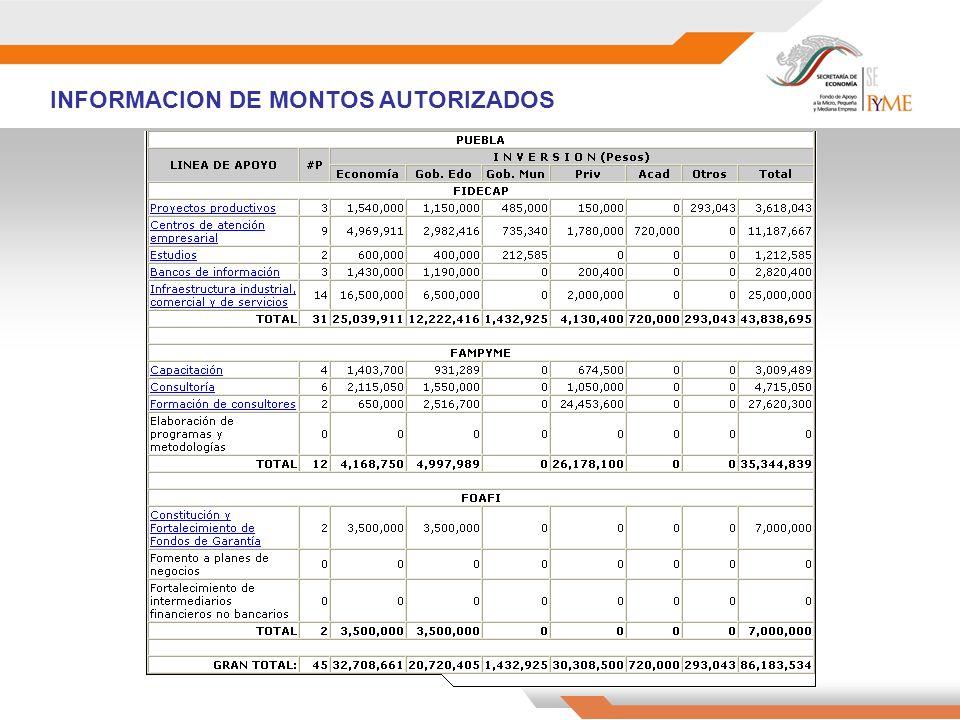 INFORMACION DE MONTOS AUTORIZADOS