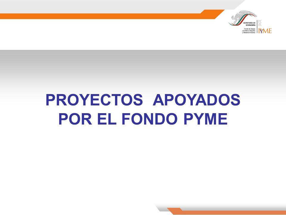 PROYECTOS APOYADOS POR EL FONDO PYME