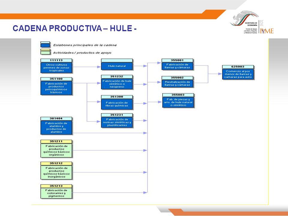 CADENA PRODUCTIVA – HULE -