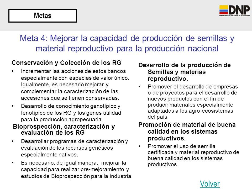 Metas Meta 4: Mejorar la capacidad de producción de semillas y material reproductivo para la producción nacional Conservación y Colección de los RG In
