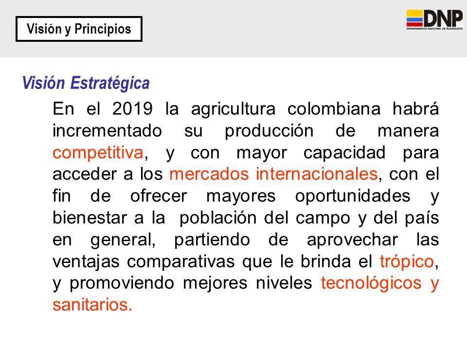 Visión Estratégica En el 2019 la agricultura colombiana habrá incrementado su producción de manera competitiva, y con mayor capacidad para acceder a l