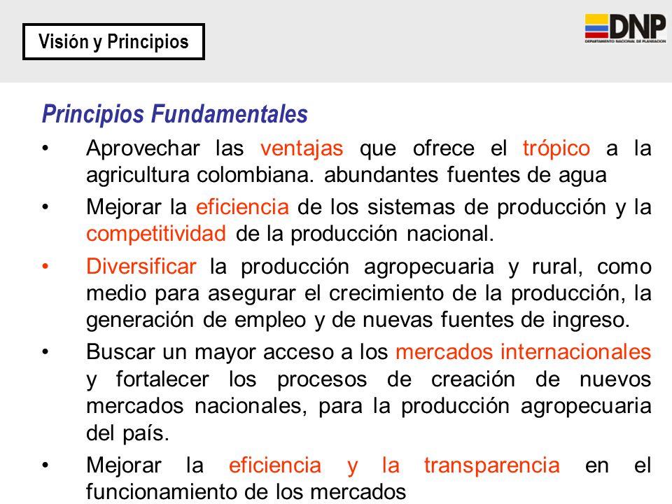 Principios Fundamentales Aprovechar las ventajas que ofrece el trópico a la agricultura colombiana. abundantes fuentes de agua Mejorar la eficiencia d