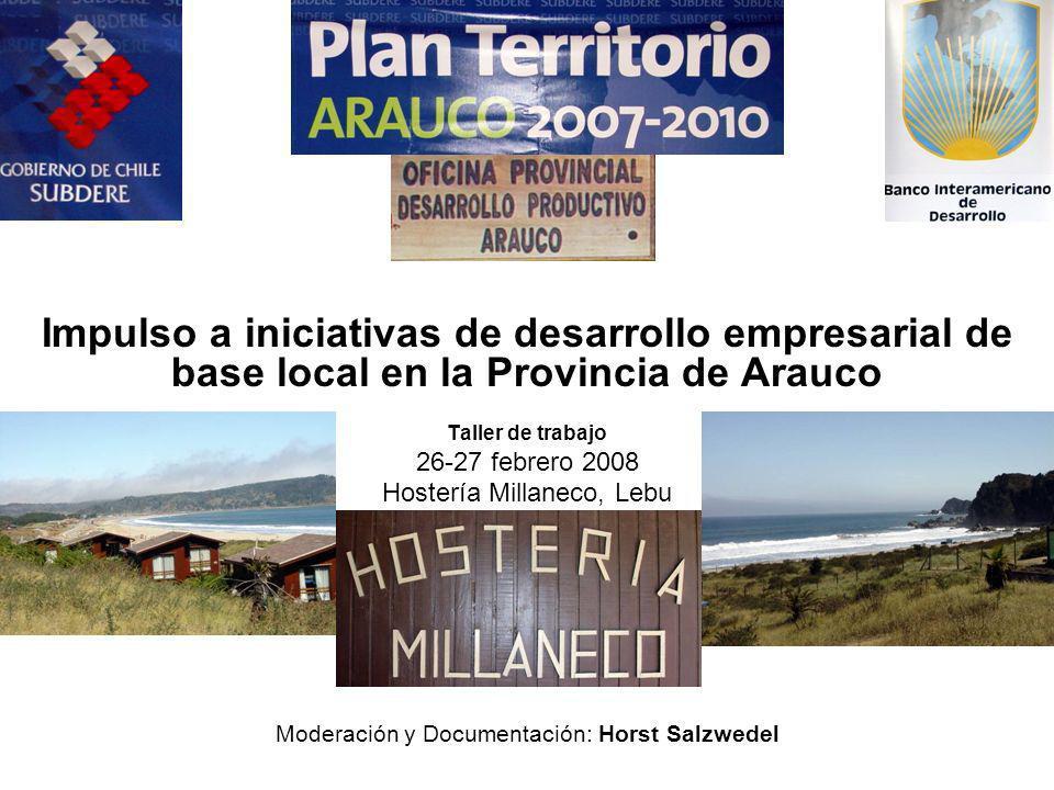 26-27 febrero 2008, Lebu: Planificación Proyecto fomento productivo territorial Impulso a iniciativas de desarrollo empresarial de base local en la Provincia de Arauco Taller de trabajo 26-27 febrero 2008 Hostería Millaneco, Lebu Moderación y Documentación: Horst Salzwedel