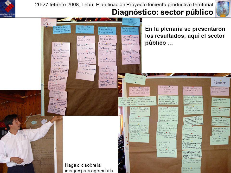 26-27 febrero 2008, Lebu: Planificación Proyecto fomento productivo territorial Diagnóstico: sector público … y aquí el grupo de los funcionarios públicos, mayormente de entidades de fomento.