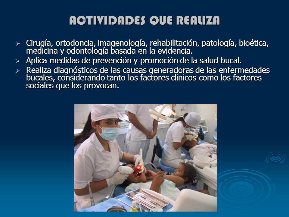 ACTIVIDADES QUE REALIZA Cirugía, ortodoncia, imagenología, rehabilitación, patología, bioética, medicina y odontología basada en la evidencia. Cirugía