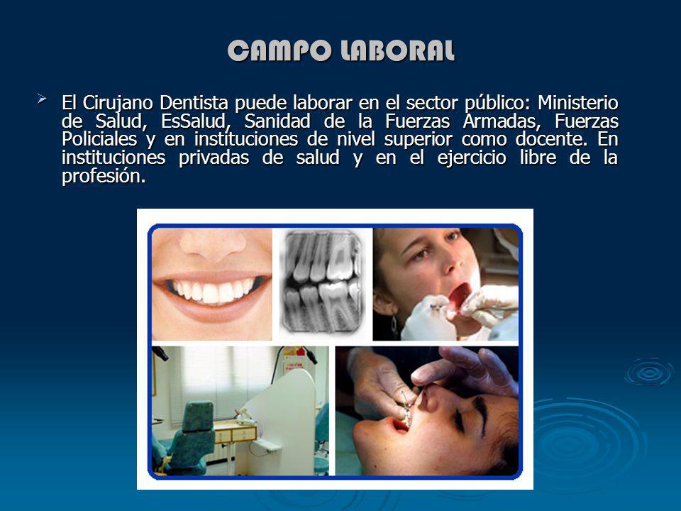 CAMPO LABORAL El Cirujano Dentista puede laborar en el sector público: Ministerio de Salud, EsSalud, Sanidad de la Fuerzas Armadas, Fuerzas Policiales