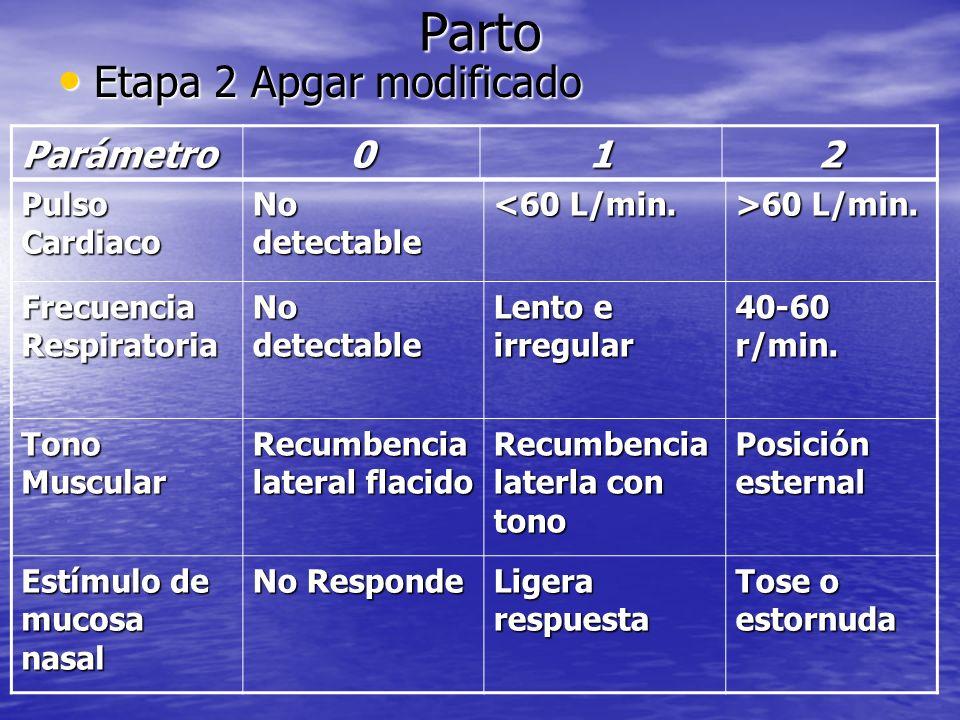 Parto Etapa 2 Apgar modificado Etapa 2 Apgar modificado Pulso Cardiaco No detectable <60 L/min. >60 L/min. Frecuencia Respiratoria No detectable Lento