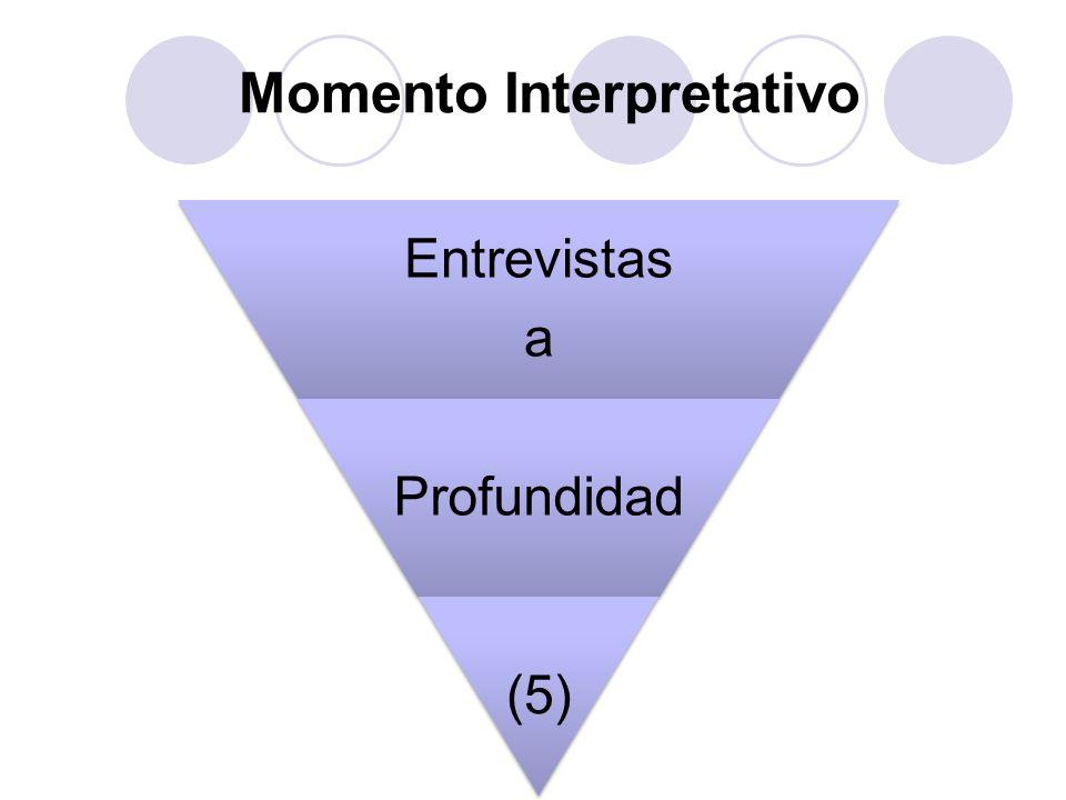 Momento Interpretativo Entrevistas a Profundidad (5)