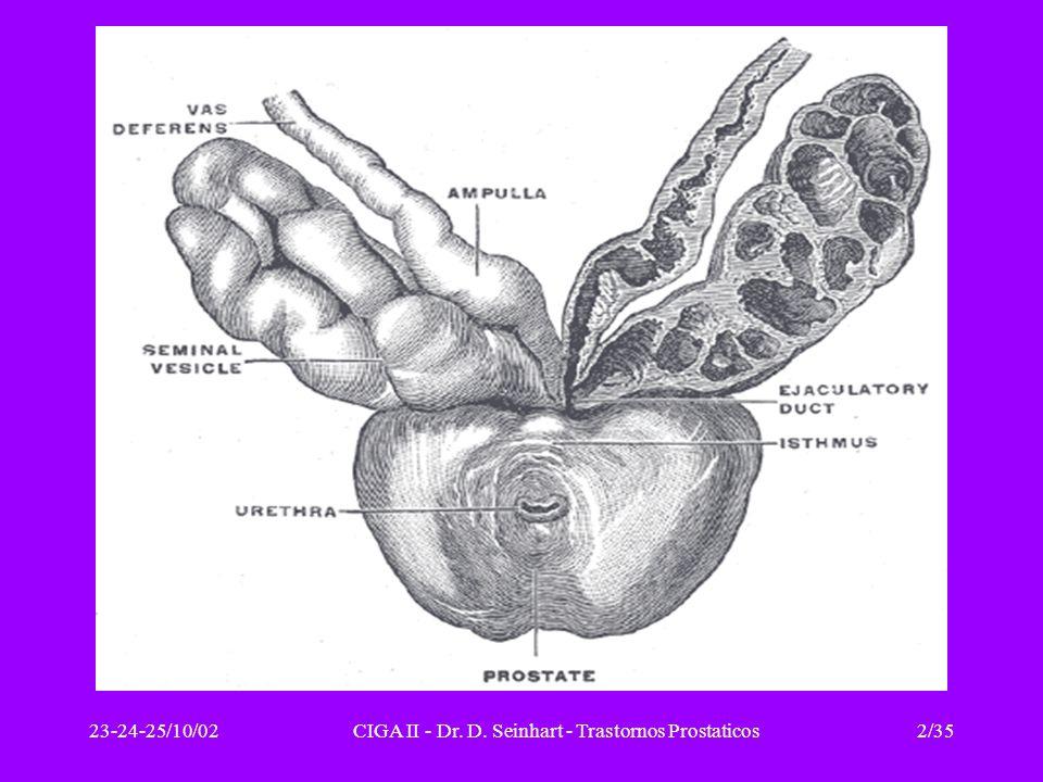 23-24-25/10/02CIGA II - Dr. D. Seinhart - Trastornos Prostaticos3/35