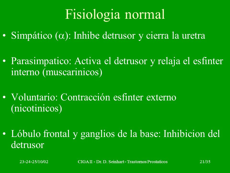 23-24-25/10/02CIGA II - Dr. D. Seinhart - Trastornos Prostaticos21/35 Fisiologia normal Simpático ( ): Inhibe detrusor y cierra la uretra Parasimpatic