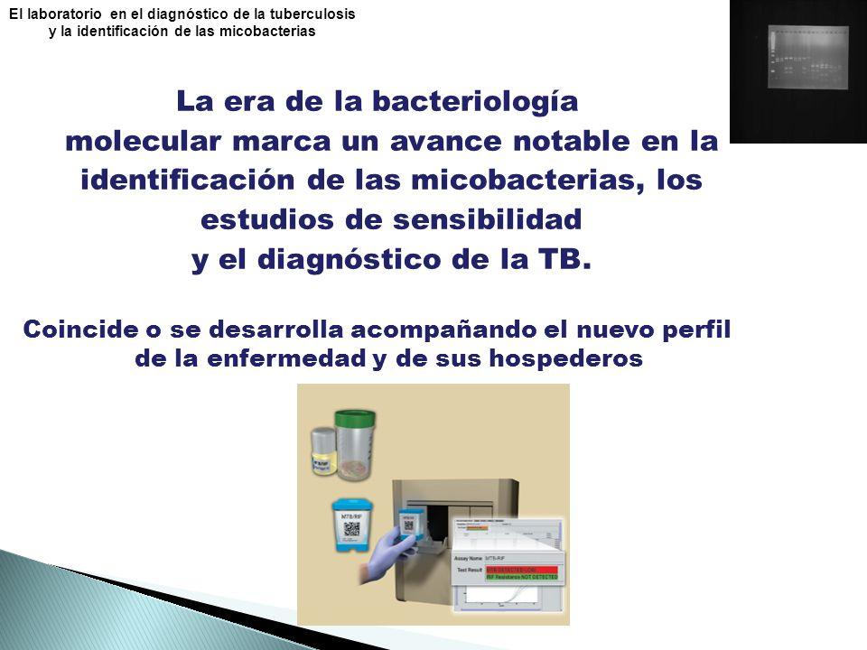 La era de la bacteriología molecular marca un avance notable en la identificación de las micobacterias, los estudios de sensibilidad y el diagnóstico de la TB.