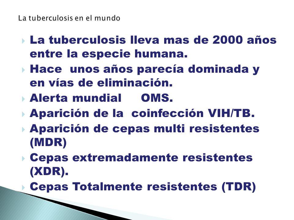 La tuberculosis lleva mas de 2000 años entre la especie humana.