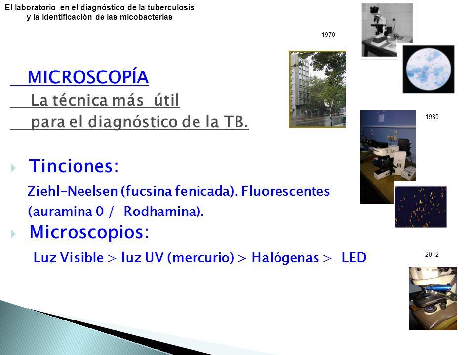El laboratorio en el diagnóstico de la tuberculosis y la identificación de las micobacterias MICROSCOPÍA La técnica más útil para el diagnóstico de la TB.