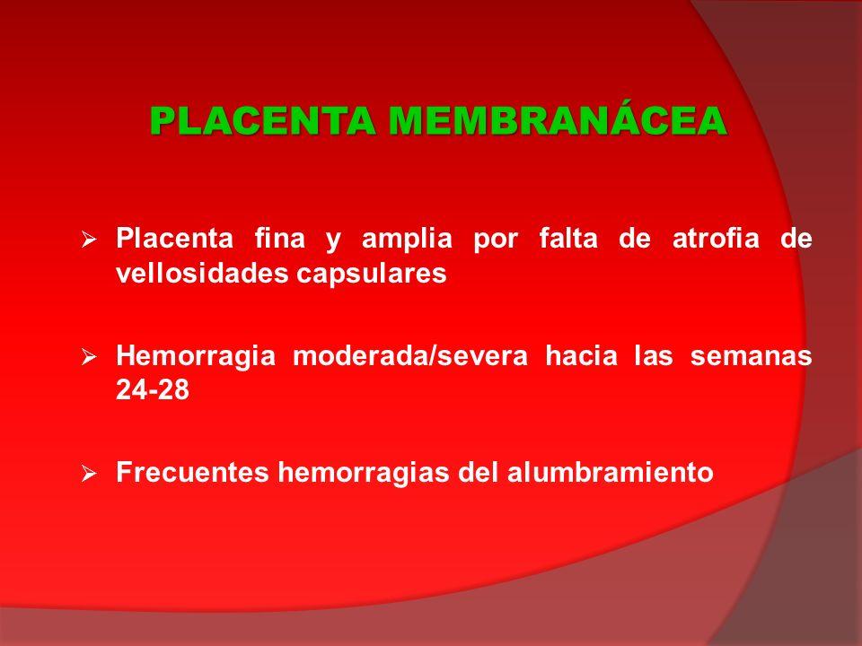 Placenta fina y amplia por falta de atrofia de vellosidades capsulares Hemorragia moderada/severa hacia las semanas 24-28 Frecuentes hemorragias del a
