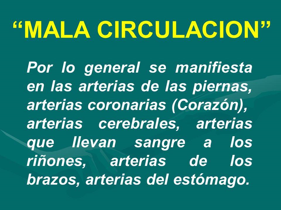 MALA CIRCULACION Por lo general se manifiesta en las arterias de las piernas, arterias coronarias (Corazón), arterias cerebrales, arterias que llevan