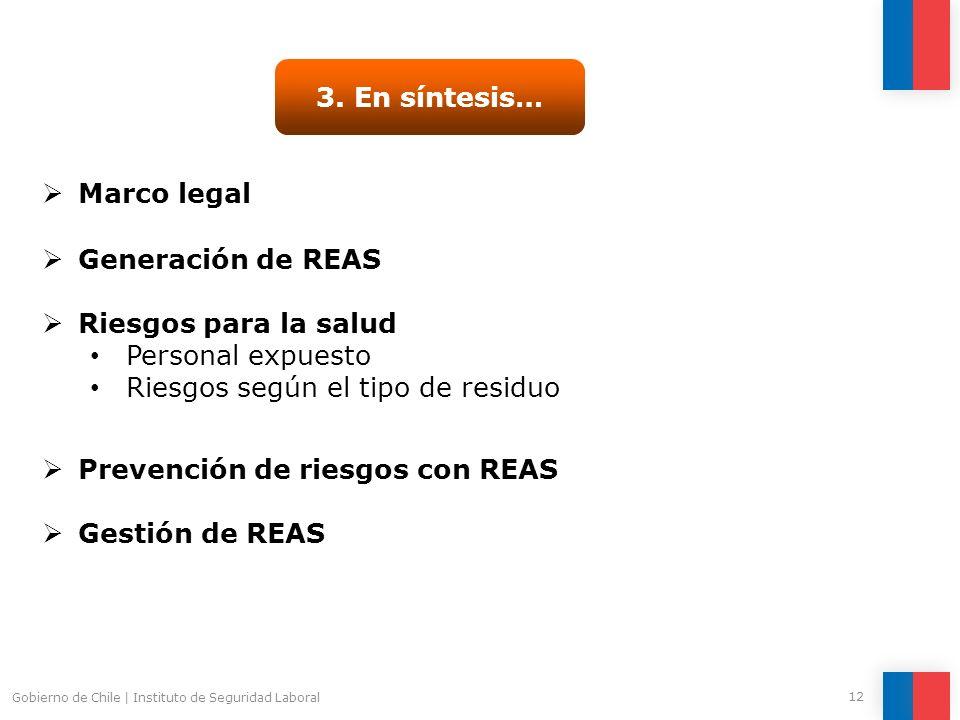 Gobierno de Chile | Instituto de Seguridad Laboral 12 3. En síntesis… Generación de REAS Riesgos para la salud Personal expuesto Riesgos según el tipo