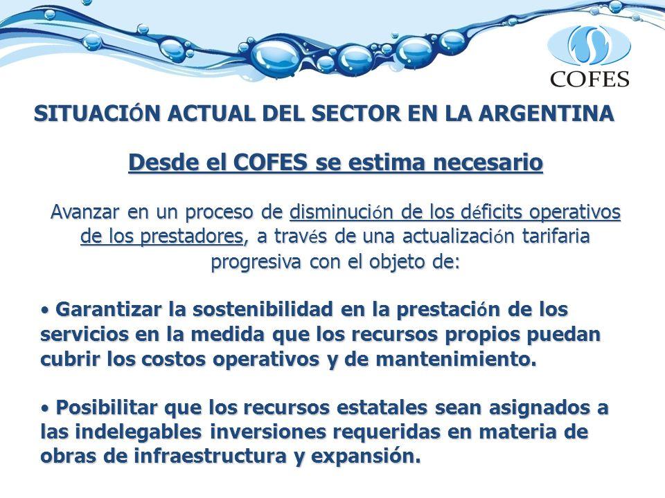SITUACI Ó N ACTUAL DEL SECTOR EN LA ARGENTINA Desde el COFES se estima necesario Avanzar en un proceso de disminuci ó n de los d é ficits operativos d