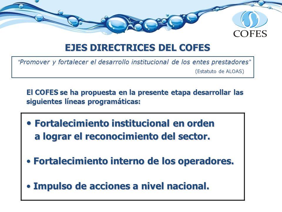EJES DIRECTRICES DEL COFES El COFES se ha propuesta en la presente etapa desarrollar las siguientes líneas programáticas: Fortalecimiento institucional en orden Fortalecimiento institucional en orden a lograr el reconocimiento del sector.