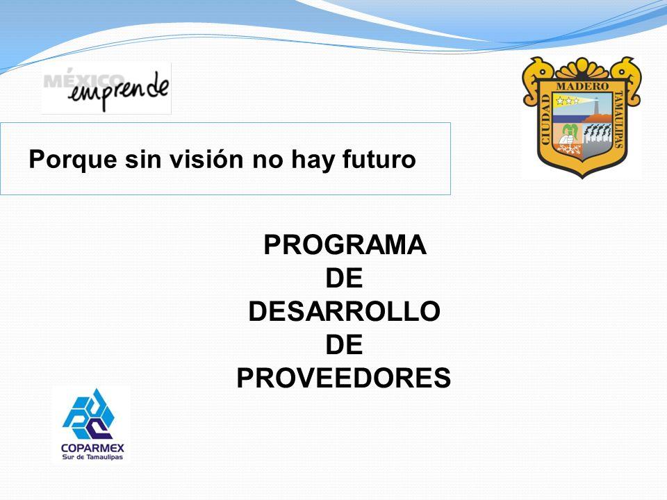 Porque sin visión no hay futuro PROGRAMA DE DESARROLLO DE PROVEEDORES