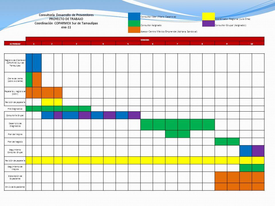 Consultoría Desarrollo de Proveedores PROYECTO DE TRABAJO Coordinación COPARMEX Sur de Tamaulipas ene-11 Consultor líder (Mario Casanova) Coordinador