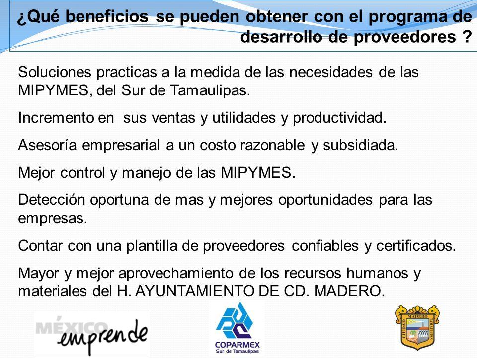 ¿Qué beneficios se pueden obtener con el programa de desarrollo de proveedores ? Soluciones practicas a la medida de las necesidades de las MIPYMES, d