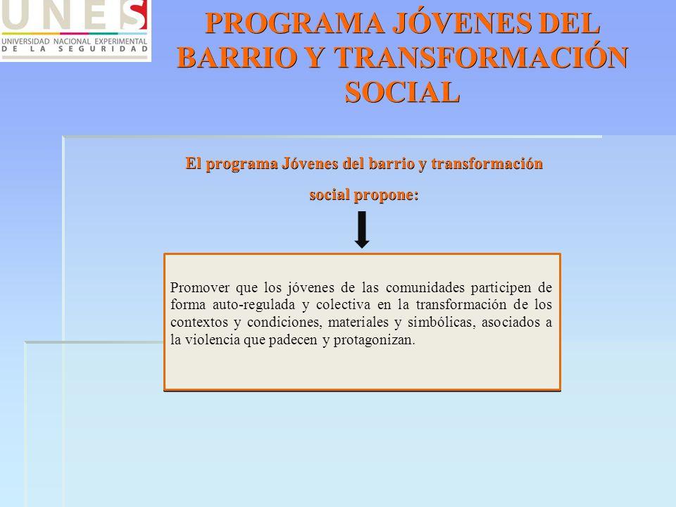 PROGRAMA JÓVENES DEL BARRIO Y TRANSFORMACIÓN SOCIAL El programa Jóvenes del barrio y transformación social propone: Promover que los jóvenes de las co