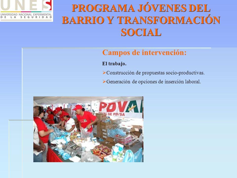 PROGRAMA JÓVENES DEL BARRIO Y TRANSFORMACIÓN SOCIAL Campos de intervención: El trabajo. Construcción de propuestas socio-productivas. Generación de op